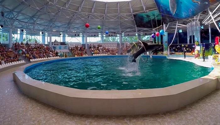 фото Дельфинарий в Евпатории