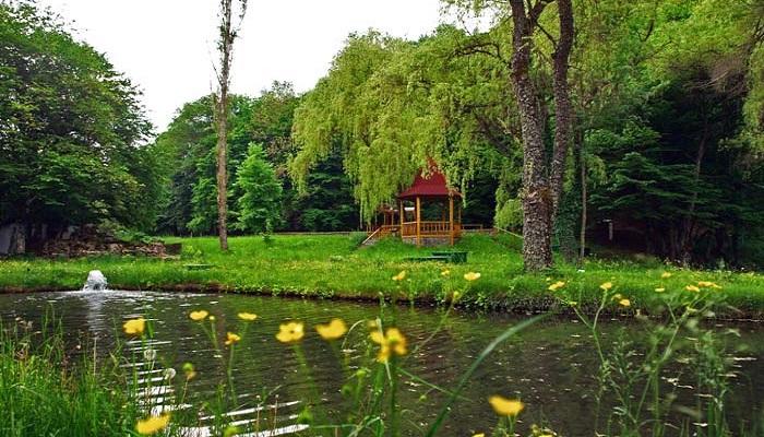 Фото Форелевые пруды Крым