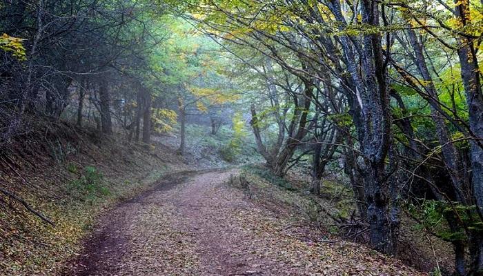 Фото Старая дорога через Ангарский перевал