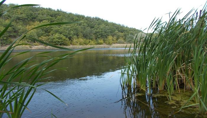 Отдых на озере Широкий Яр