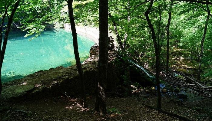 Фото Юсуповский пруд