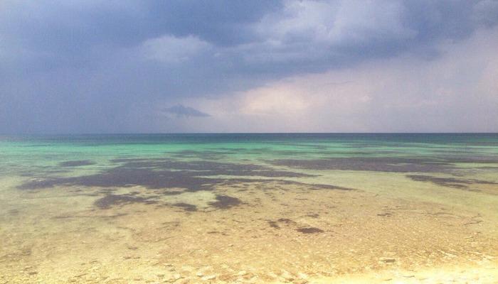 Фото Пляж Окуневки