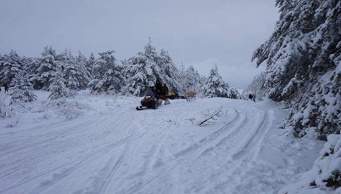 Снегоходы на Ай-Петри