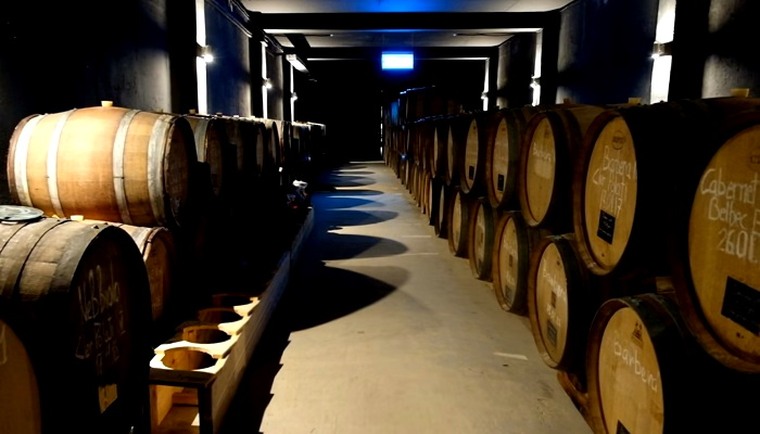 Экскурсия в винные подвалы Павла Швеца Севастополь