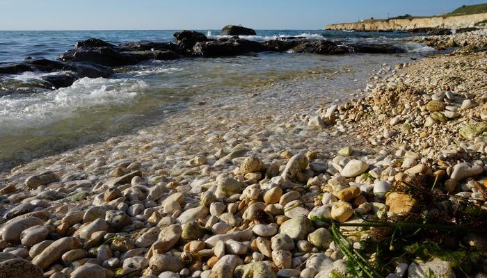 Фото Пляж Скалки