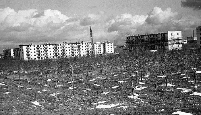 Старые фото сквера 60-летия СССР Севастополь