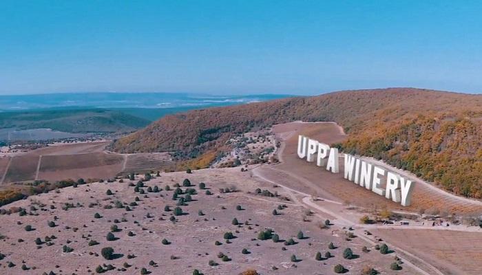 Винодельня Uppa Winery Севастополь