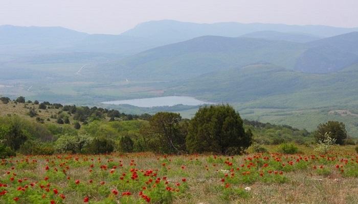 Фото Бельбекская долина