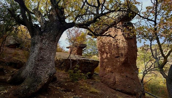 Фото Каменные грибы ущелье Сотера