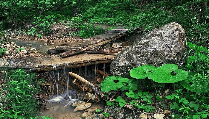 Фото Тропа на Ускутские водопады