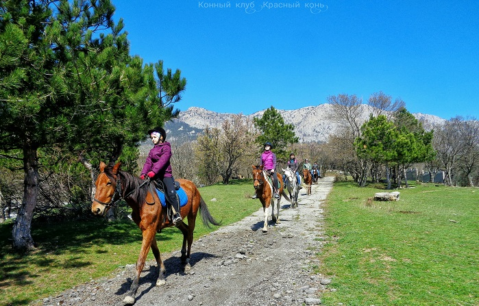Фото Конные туры в Ялте