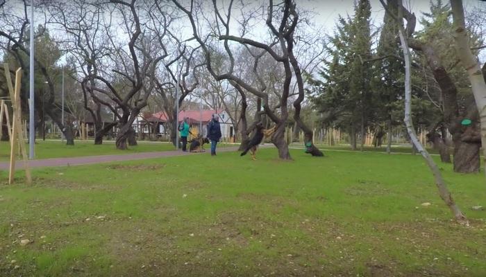 Сквер Кесаева