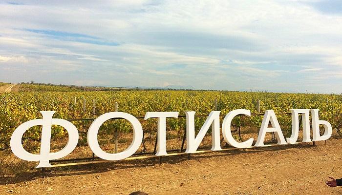 фото виноградники Фотисаль