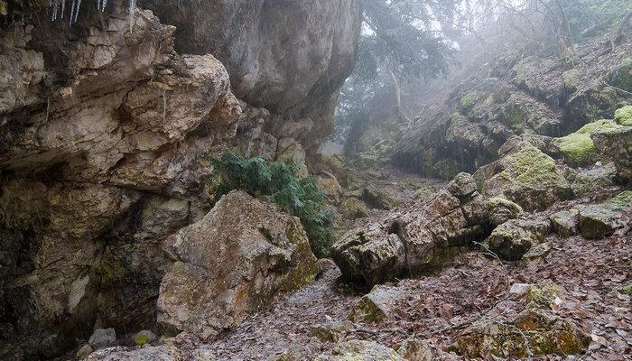 Доледниковое Тисовое ущелье