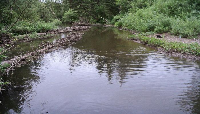 Рыбалка в Крыму река Кача