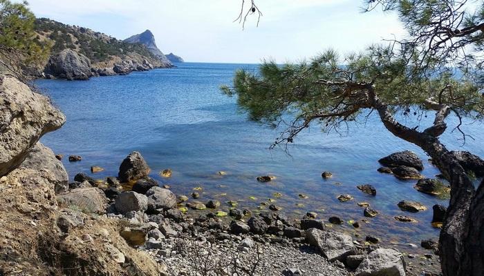 Пляж Черепашья бухта