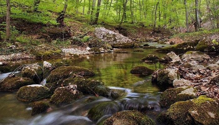 Река Бурульча