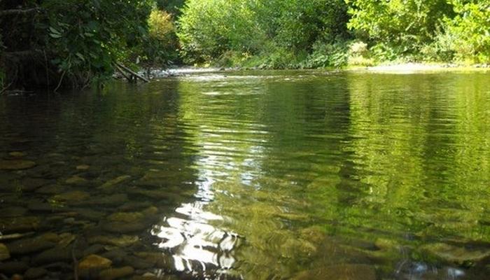 Река Кача