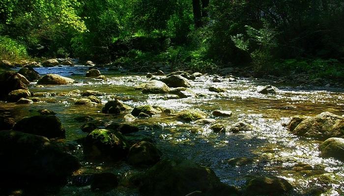 Река Коккозка