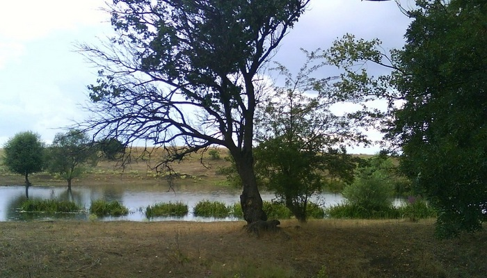 Река Мокрый Индол