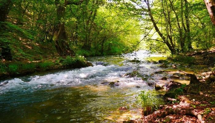 Река в Крыму