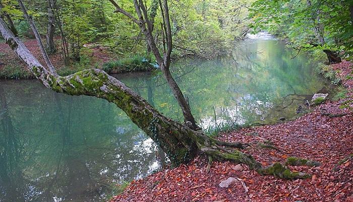 Фото Природные и рукотворные тропы Черноречья