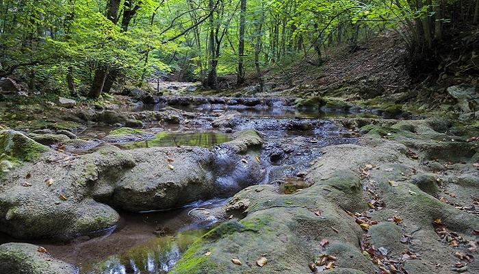 Фото Река Узунджа