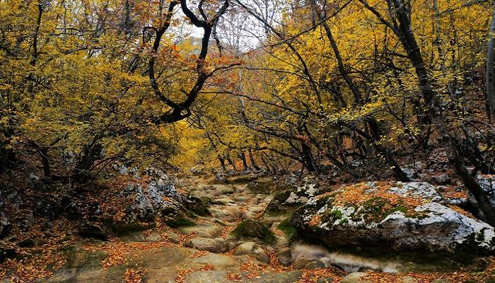 Фото Засушливая осень в Крыму