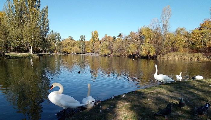 Достопримечательности Крыма парк Гагарина Симферополь