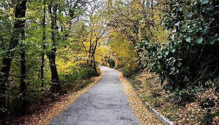 Пешеходные дорожки Массандровский парк Крым