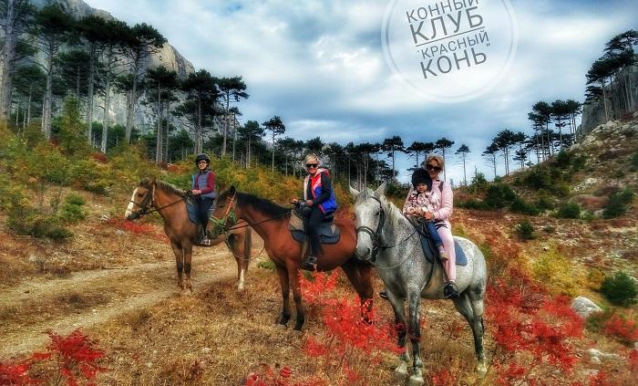Фото Конные прогулки в Ялте
